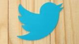 Twitter отреагировал на решение Роскомнадзора замедлить его работу